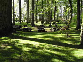 Reservable Picnic Area #2